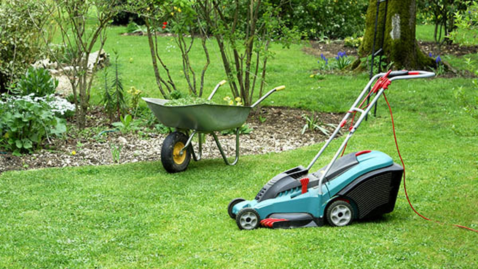 Lawn mower and wheelbarrow sitting on lawn