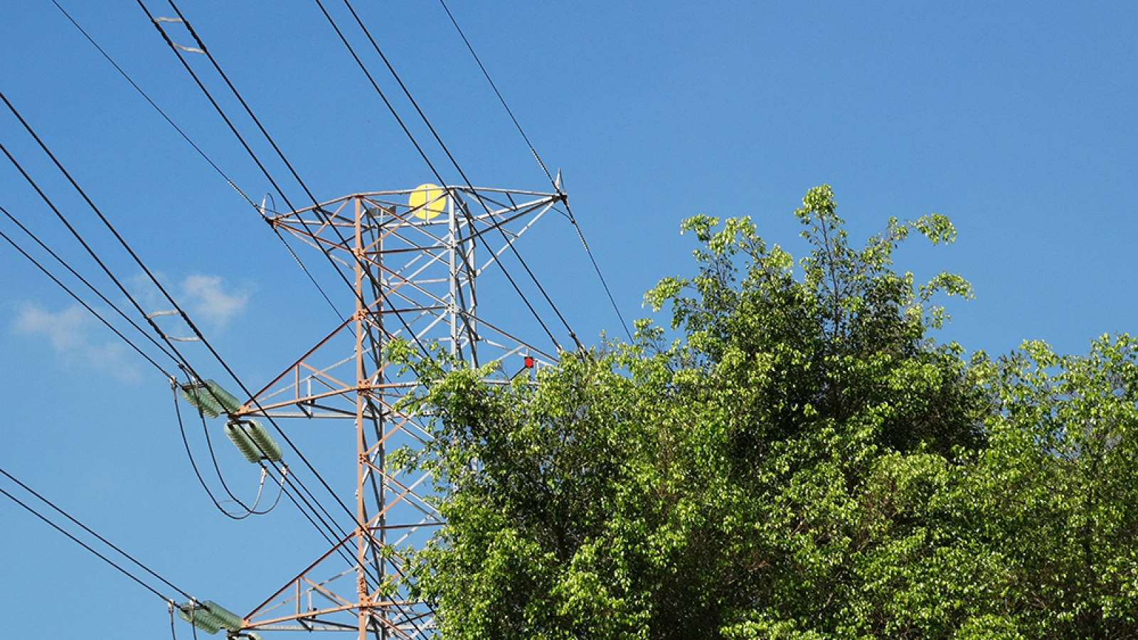 transmission tower with a tree in the foreground