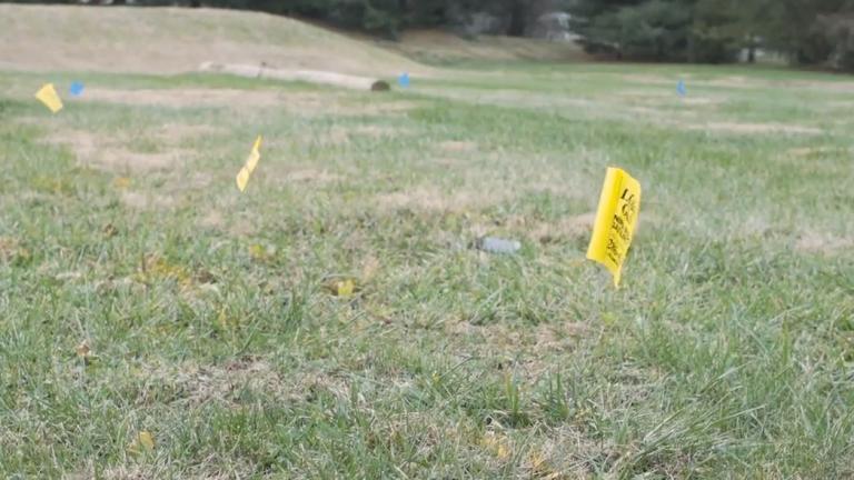 LG&E flags throughout a lawn