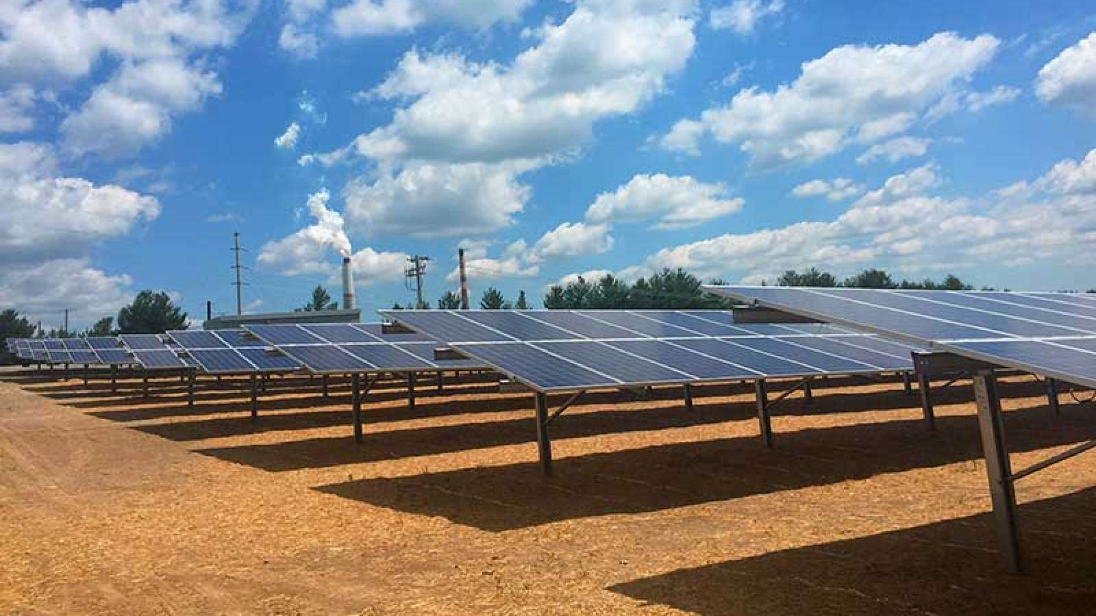 rows of solar panels at E.W. Brown Solar Facility