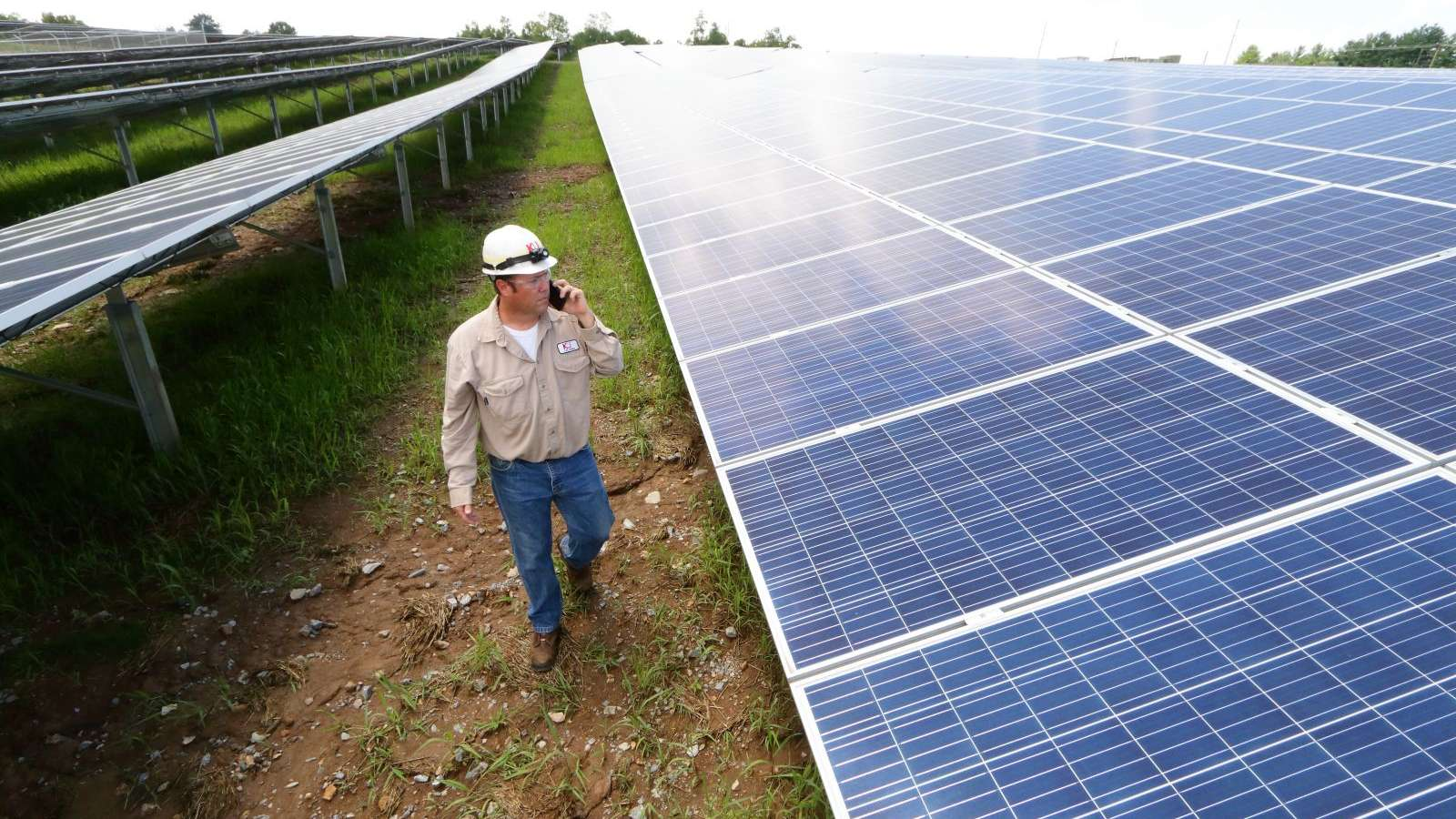 employee at E.W. Brown Solar facility on phone walking in between rows of panels