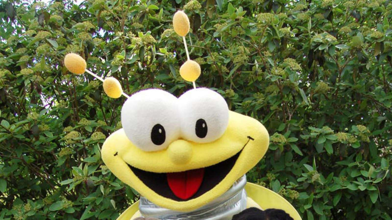 Louie the Lightning Bug