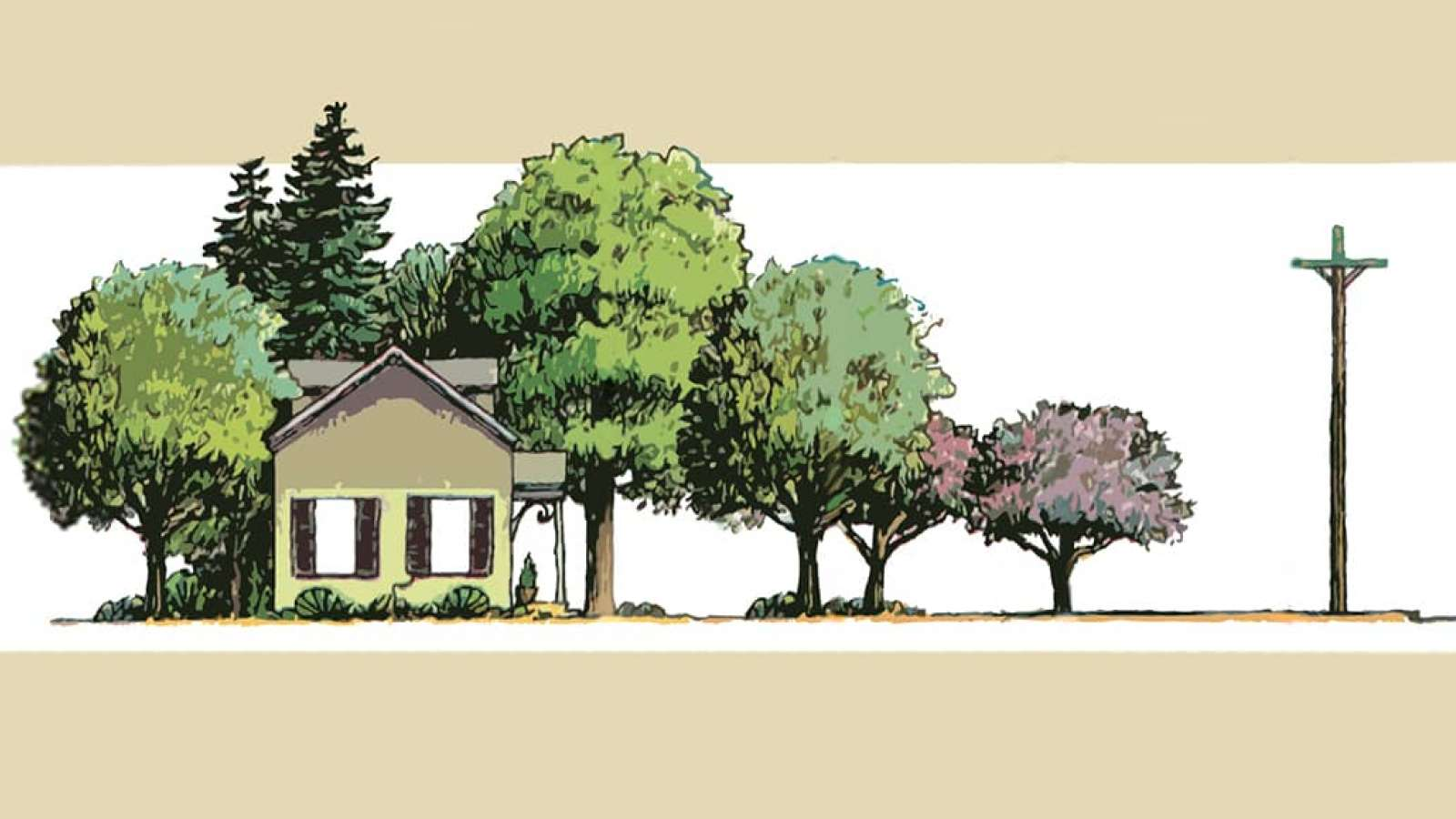 Illustration of trees near a power line