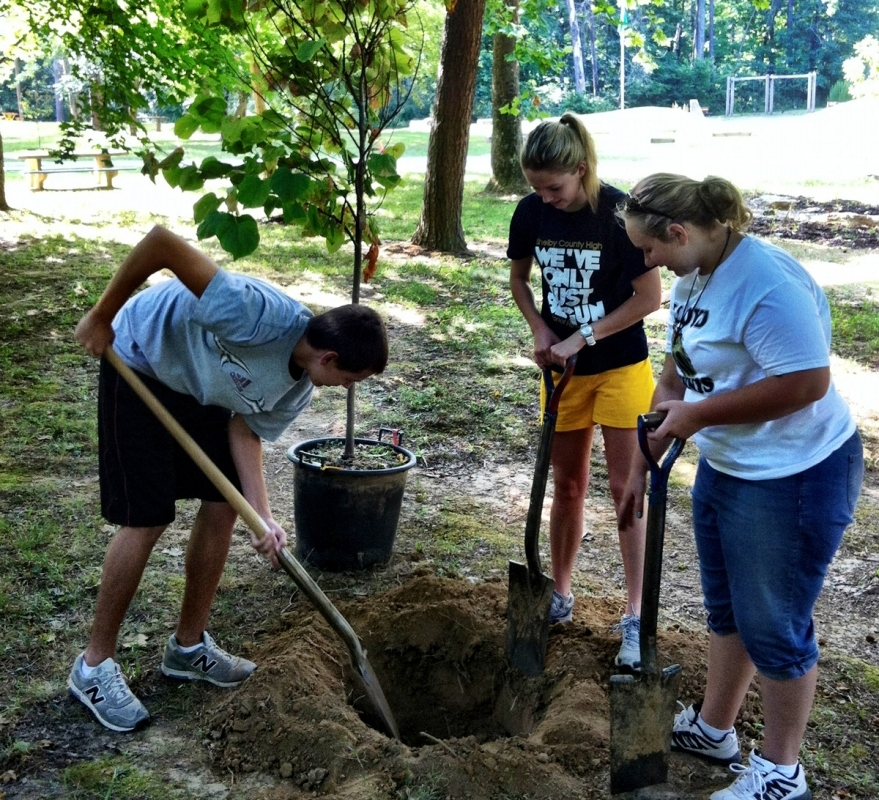 Teenagers planting a tree in Bernheim's Garden Pavillion area.