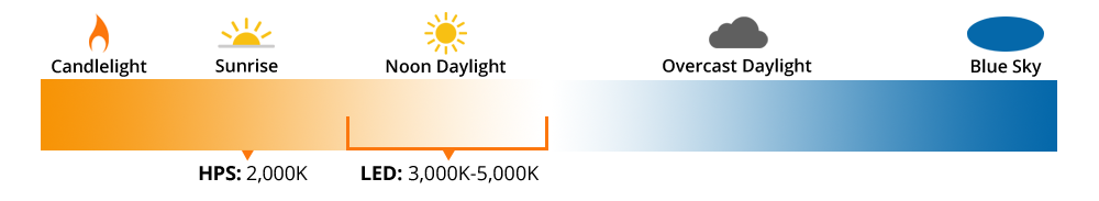 light color temperature chart with orange on left and blue on right