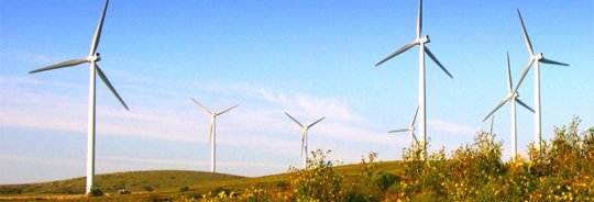 Windfarm.