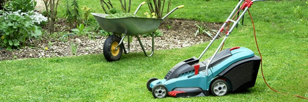 yard with electric lawnmower and wheelbarrow in background